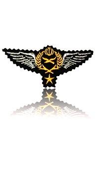 وینگ خلبانی هوانیروز (تک ستاره)