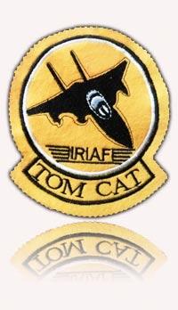آرم سینه شماره 6 تامکت اف-14