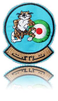 آرم سینه اف-14 (تامکت)
